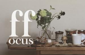 focus2.1.jpg
